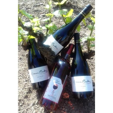 Carton de 12 bouteilles découverte de nos vins (transport gratuit)